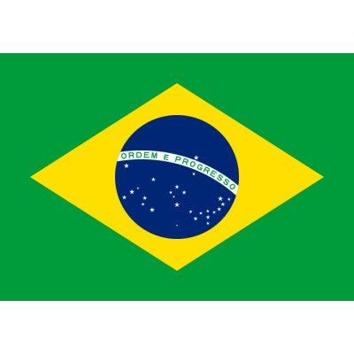 画像1: ブラジル キャラメラード