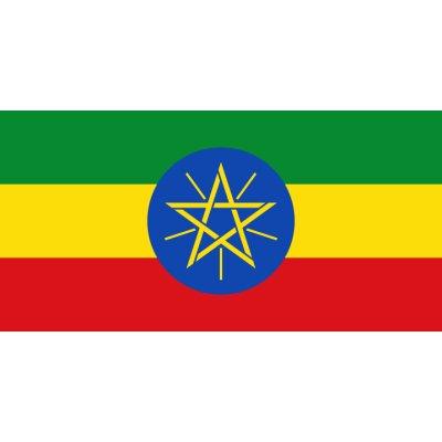 画像1: エチオピア イリガチャフェG4